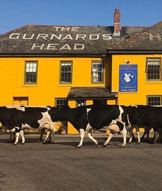 Gurnards Head Pub, St Ives