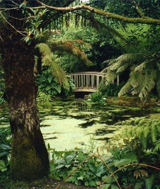 Trengwainton Gardens, Cornwall