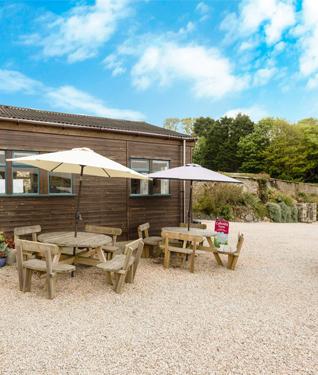 Trewidden Gardens Tea Room, Cornwall